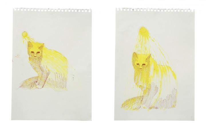 Cat paintings, documentation 18